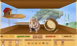 HamsterStory - Il tuo nuovo roditore