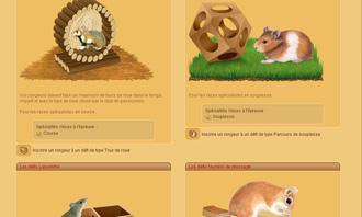 HamsterStory - Le sfide roditori